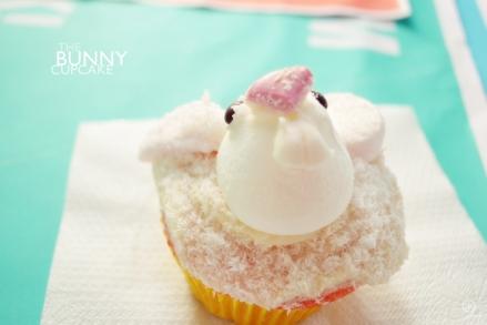 DSC_0223_bunny
